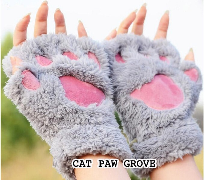 Some Interesting Facts About Cat Paws