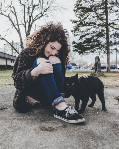 Step By Step How To Get A Cat To Like You More