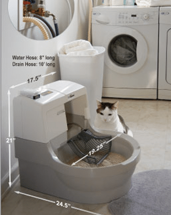 Clean And Fresh With Cat Genie
