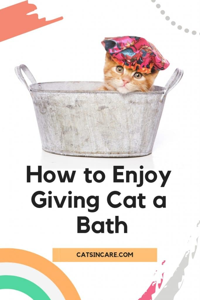 How to Enjoy Giving Cat a Bath