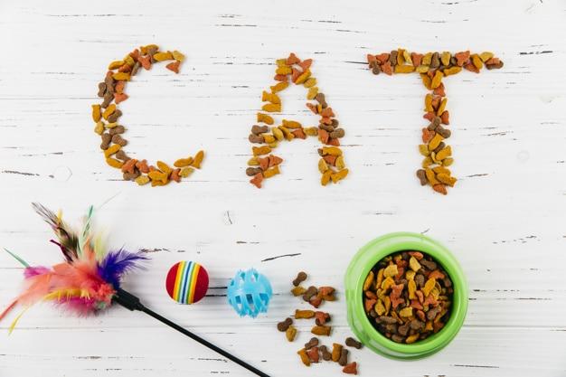Can Kittens Eat Cat Treats?